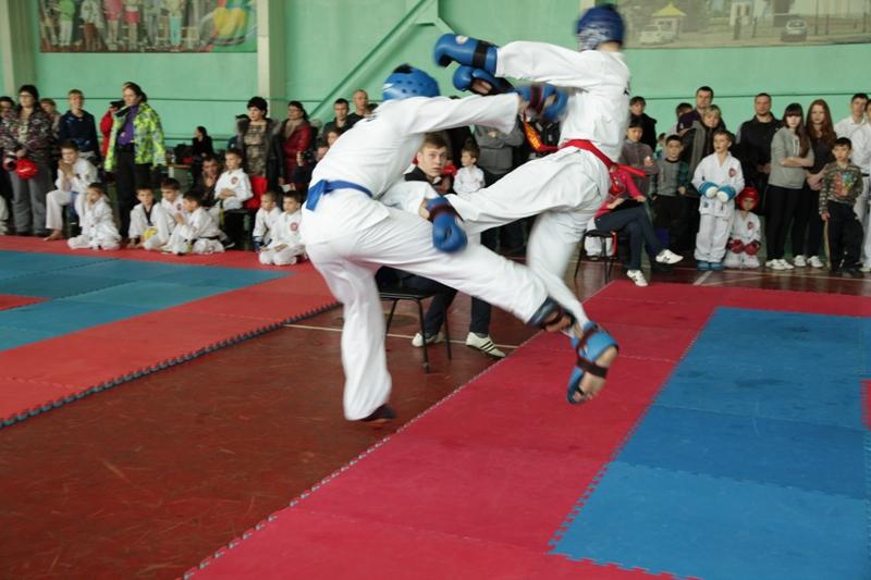 Завершился турнир по тхэквондо на призы парламента ЕАО