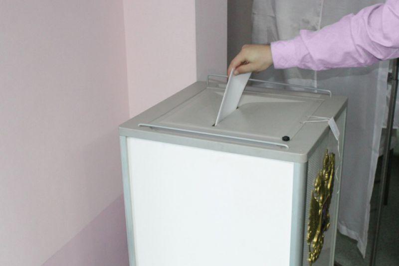 Готовится новый закон о выборах депутатов парламента ЕАО