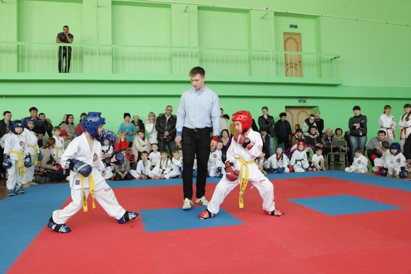 Состоялся турнир по тхэквондо на призы парламента ЕАО