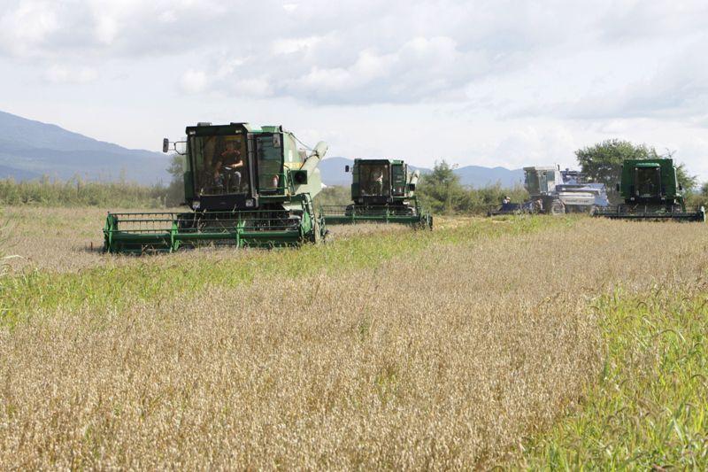 В области отмечают День работников сельского хозяйства и перерабатывающей промышленности