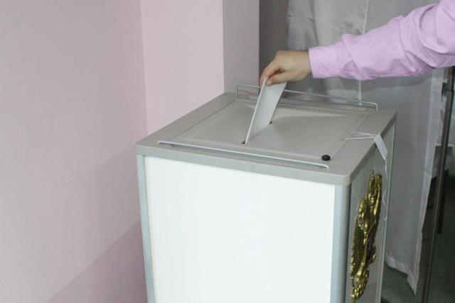 В области проголосовало уже более 23 процентов избирателей
