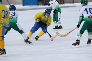 хоккей 2012 (24)