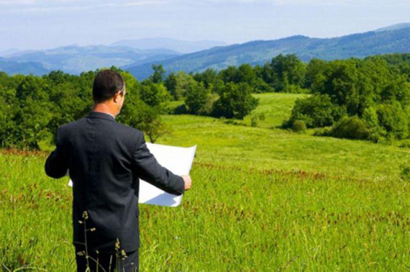 Готовятся предложения в развитие закона о «дальневосточном гектаре»