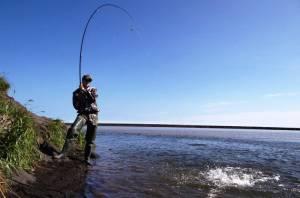 А. Тихомиров: Депутаты учли интересы рыбаков-любителей