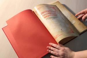 Депутаты парламента ЕАО – о Конституции России