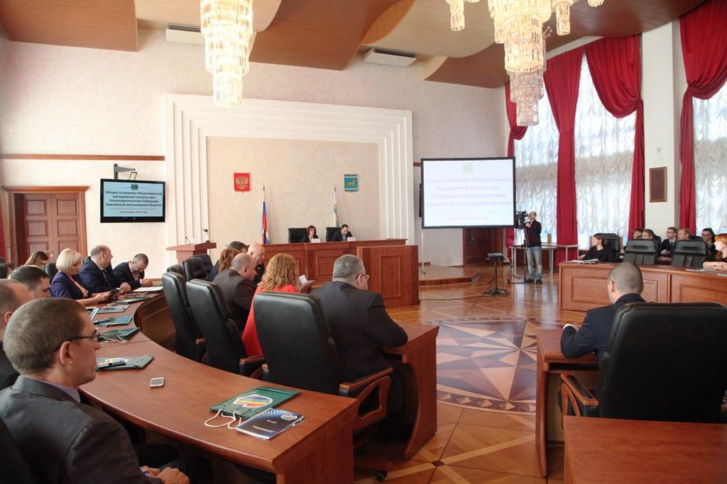 Молодежная палата ЕАО отмечает 15-летие