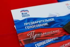 Депутаты примут участие в народном голосовании